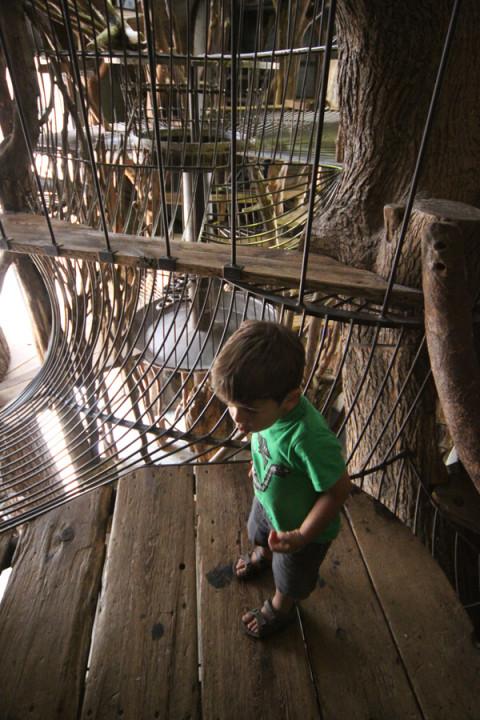 "Eric explorando a ""tree house"""