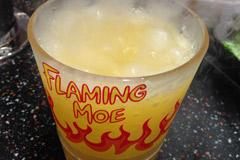 12-flamingmoeuniversalt