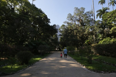 Andando pelo Jardim Botânico e o Cristo Redentor lá no alto, ao fundo