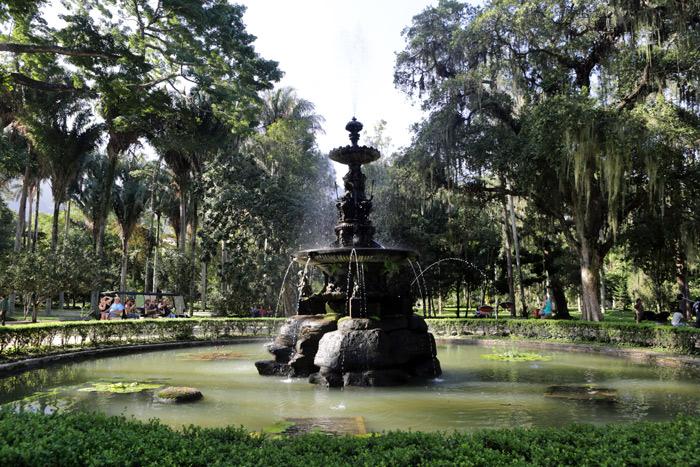 Jardim Botânico do Rio de Janeiro – um oásis para observar plantas, tucanos e macacos