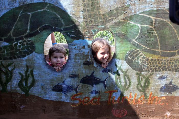 Curtindo South Padre Island: tartarugas, praia, parque aquático e milhares de gaivotas