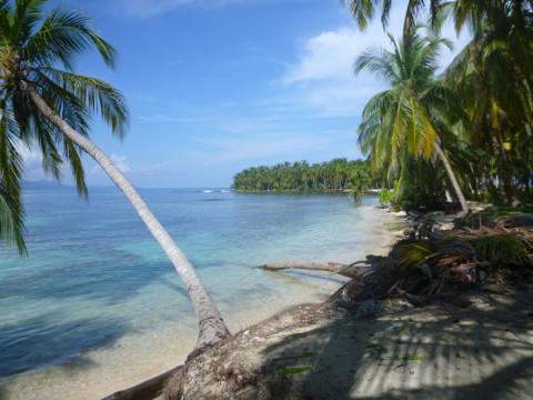 Esse é o lado que tem coral, e muitos coqueiros caídos na água também