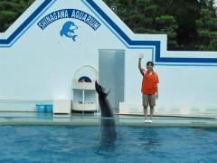 golfinho dando tchau aquário de shinagawa toquio