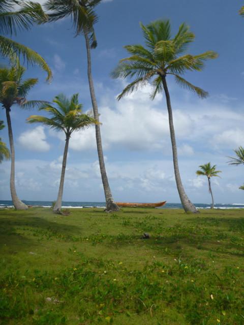Uma canoa, coqueiros, céu azul, marzão atrás, não precisa de mais nada