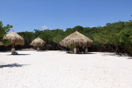 Explorando a ilha: dirigindo por Aruba