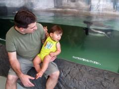 eric e os pinguins em tóquio