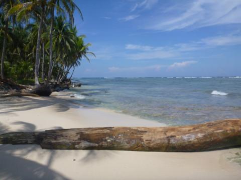 Uma pontinha da ilha, com recife e as ondas