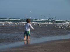 42-praiasouthpadreisland