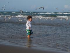 43-praiasouthpadreisland