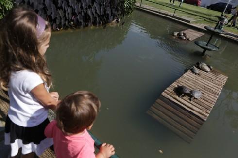 Julia e Eric não queriam sair do lago das tartarugas em uma das entradas do Jardim Botânico