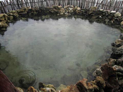 Um cercadinho ao lado do restaurante onde ficam peixes, siris, lagostas e até uma tartaruga no Yandup Lodge