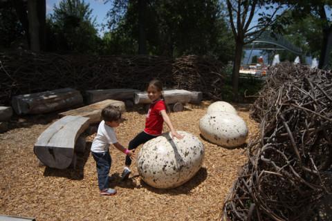 Julia e Eric adoraram esse ninho gigante