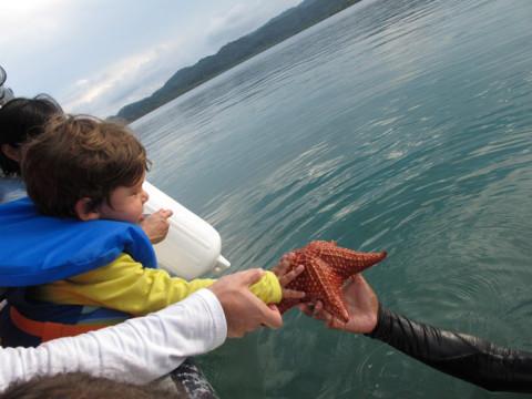 Eric quis colocar a mãozinha na estrela do mar