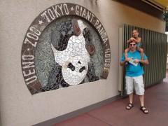 Pandas gigantes ueno zoo