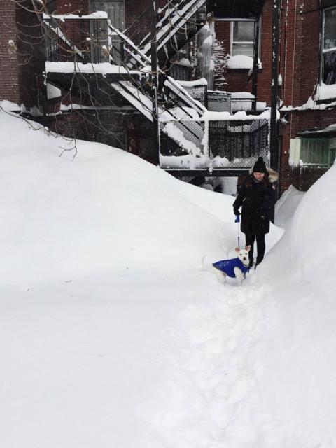 Anathalia e Maddox - como é morar em Boston, Massachusetts