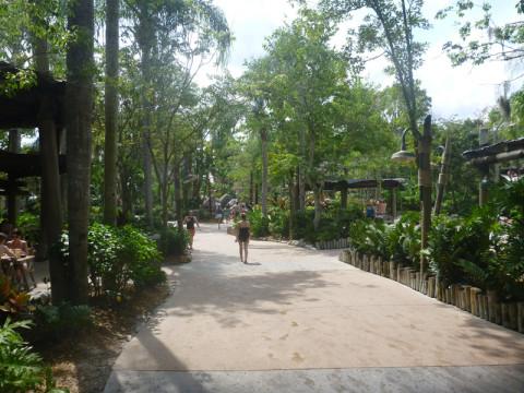 Andando pelo parque, do Shark Reef em direção a entrada
