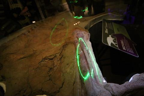A apresentação do Leonardo vai mostrando com laser os detalhes importantes