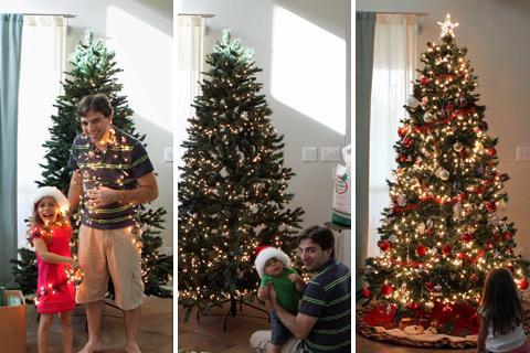 Árvore de Natal 2012