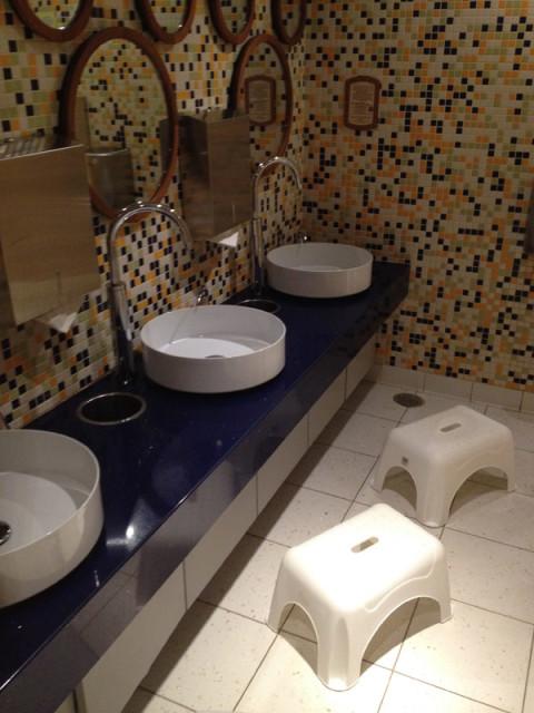 O banheiro do Oceaneer Club é todo rebaixado pras crianças