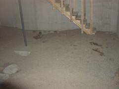 basementconstrucao