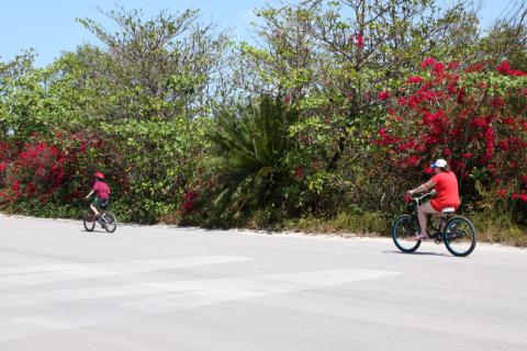 Pessoal que alugou bicicletas pedalando pela ilha da Disney