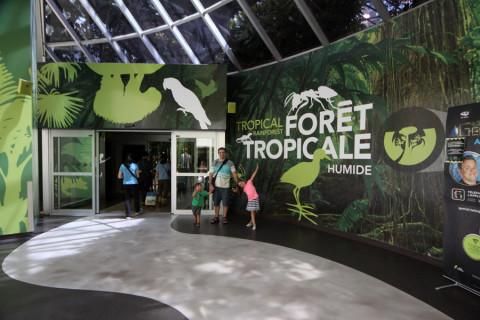 Entrando na Floresta Tropical no Biodôme de Montréal