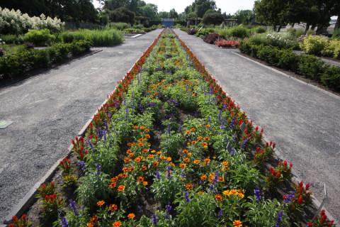 Jardins espetaculares no Jardim Botânico