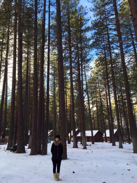 O visual depois da neve em Lake Tahoe