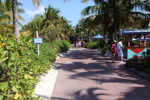 Os caminhos na ilha da Disney são todos assim, com muitas plantas e flores