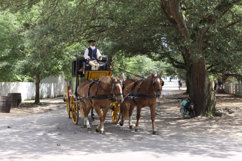 Várias charretes levam visitantes pela cidade