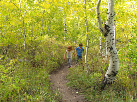 As crianças na trilha
