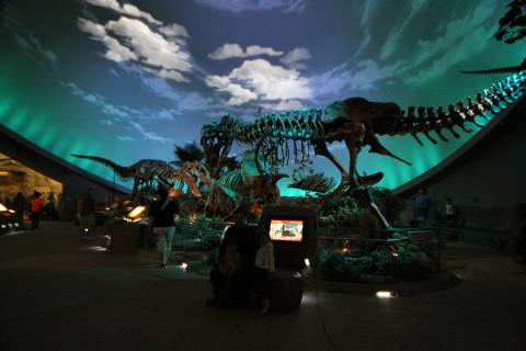 Dentro da Dinosphere