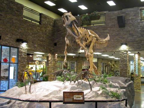 Um fóssil logo na entrada