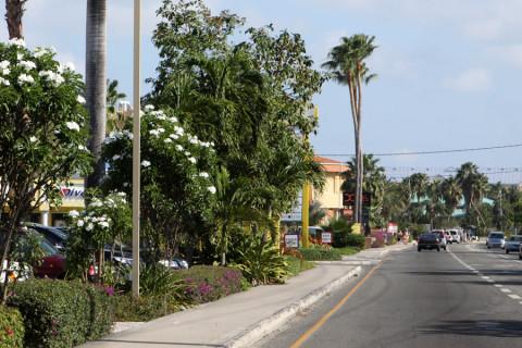 Dirigindo em Grand Cayman - do lado esquerdo!