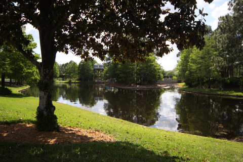 Mais uma foto do rio que corta o hotel, a paisagem é bonita