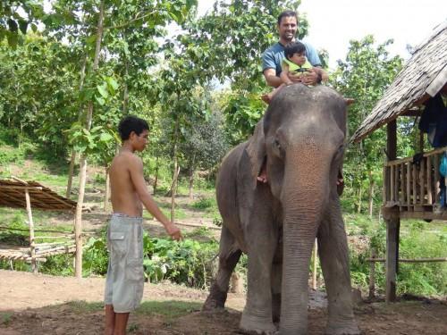 elefantenolaos