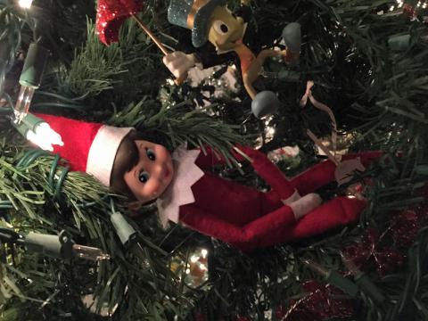 Escondida na árvore de Natal
