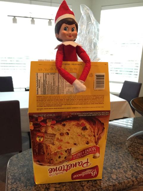Elf mostrando que gosta de panettone também