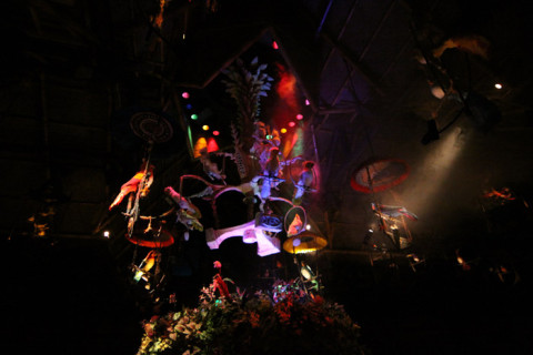 O show dos passarinhos no Enchanted Tiki Room