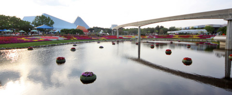 epcotflowerngardenpanorama
