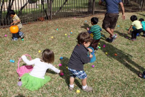 Eric em ação pegando ovinhos