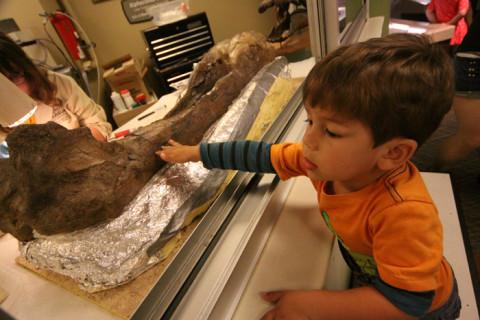 Eric colocando a mão em um fóssil no laboratório