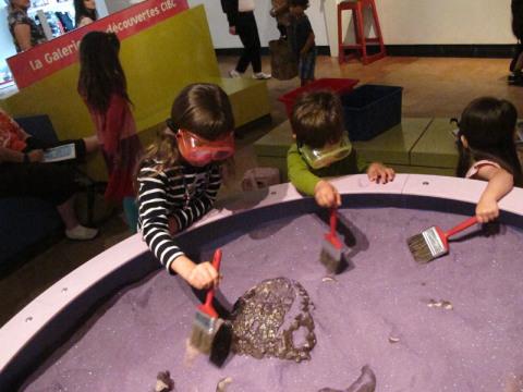 Meus pequenos paleontologistas em ação
