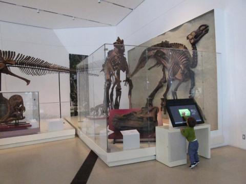 ericromdinossauros