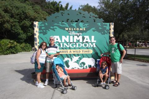 Chegando no Animal Kingdom p(em setembro)