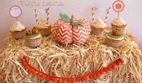 Festa Cute Pumpkin: foco nas abóboras