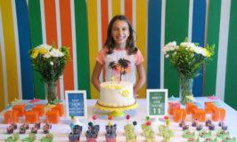 Festa de 11 anos da Julia