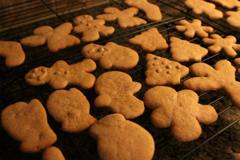 Os gingerbread cookies já assados, prontos pra decorar (ou comer)