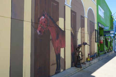 Horse, pra tirar uma foto com chapéu de cowboy ;-)