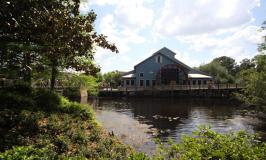 Disney's Port Orleans Riverside review: a experiência da Mônica